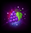 purple grapes bunch with green leaf and sparkles vector image