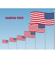 USA flags vector image vector image