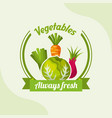 vegetable lettuce carrot onion chives always fresh vector image