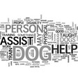 benefits of assist dogs text word cloud concept vector image vector image