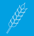 ear of wheat icon outline style vector image vector image