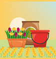 gardening bucket potting soil flowers design image vector image