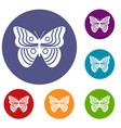 stripped butterfly icons set vector image vector image