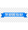 blue ribbon with try before you buy text vector image vector image