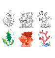 corals seaweeds and underwater wildlife plants vector image