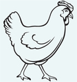 Figure chicken vector image vector image