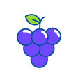 isolated grapes design vector image vector image