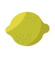 lemon citrus fruit tropical fresh icon vector image
