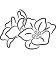 a fresh flower isolated vector image