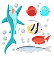 cartoon style fish and water bubbles shark vector image