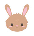 cute rabbit face animal cartoon isolated white vector image vector image