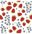 Fruit berry pattern vector image vector image