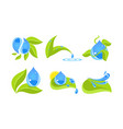 green leaves and water drops set ecology concept vector image