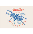 insect logo vintage bug beetle label for bar or vector image vector image