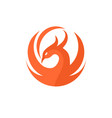phoenix circle logo vector image vector image