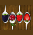 set of metal spoons with berries vector image vector image