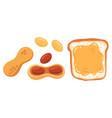 set peanut snack vector image
