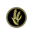 wheat rice agriculture logo inspiration vector image vector image