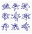 ballpoint pen drawing roses set vector image