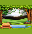 a park scene at nigh vector image vector image