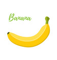 banana cartoon flat style vector image vector image