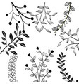 hand-drawn leaves design vector image