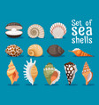 sea shells flat icons set vector image vector image