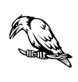 Wild raven vector image vector image