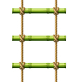 Bamboo rope ladder vector image vector image