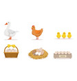 poultry farm with goose hen three little baby vector image