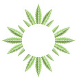 round frame with green leaves marijuana vector image vector image