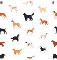 seamless pattern with companion dogs of different vector image vector image