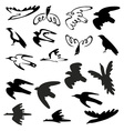 stylized birds and silhouettes vector image vector image