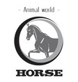 animal world horse circle horse background vector image vector image