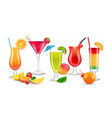fruits drinks seasonal summer realistic cocktails vector image vector image