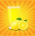 juice and slices orange and sunburst vector image