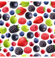 realistic berries seamless pattern vector image vector image