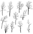 set of different winter trees vector image vector image