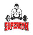 sport supergym a weightlifter background im vector image