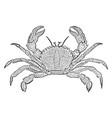 velvet crab vintage vector image vector image