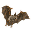 wild bat icon cartoon style vector image