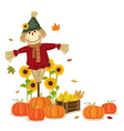 Autumn harvesting with cute scarecrow and pumpkins vector image