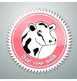 Cows logo vector image