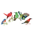 Cute colorful small birds sitting on twig on white