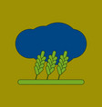 flat icon on background wheat cloud vector image vector image