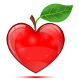 Heart apple vector image vector image