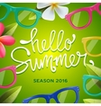 Hello summer green background with sunglasses vector image