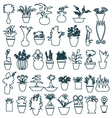 pot plant cute house plants in pots vector image vector image