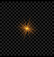 realistic sparkle or star vector image