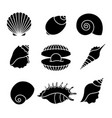 Sea shells silhouettes isolated on white